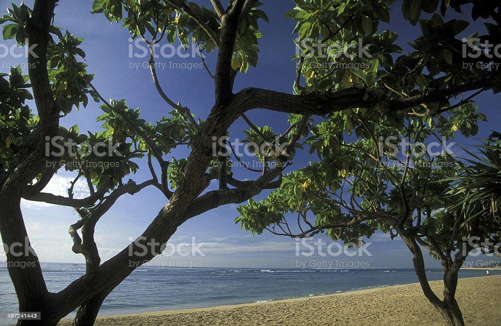 ASIA BALI NUSA DUA BEACH royalty-free stock photo