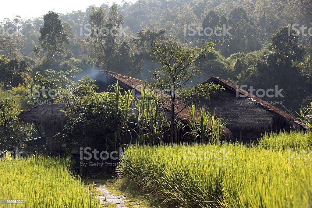 THAILAND CHIANG MAI stock photo
