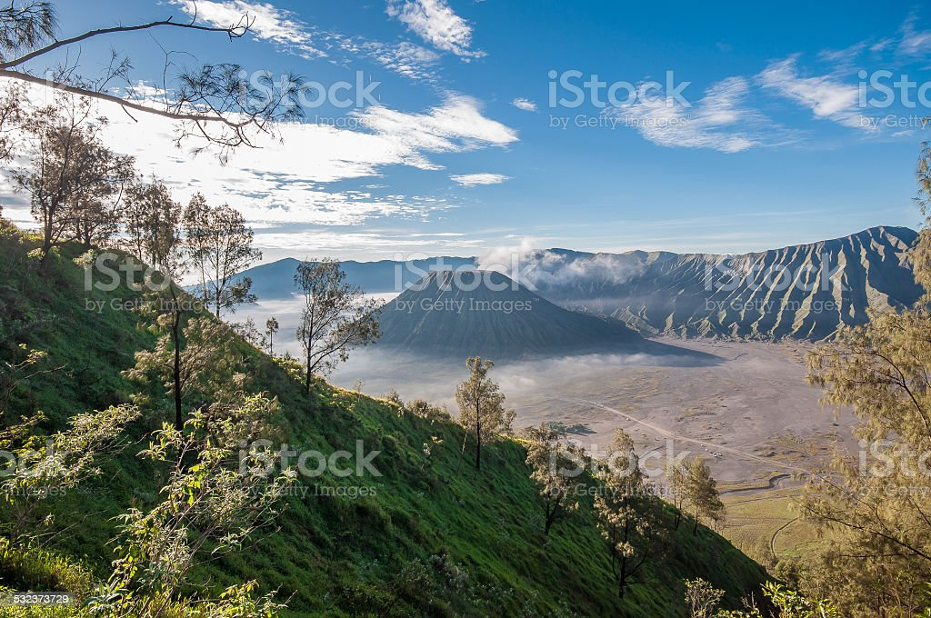 BROMO , INDONESIA  -  15 MARCH 2014 stock photo