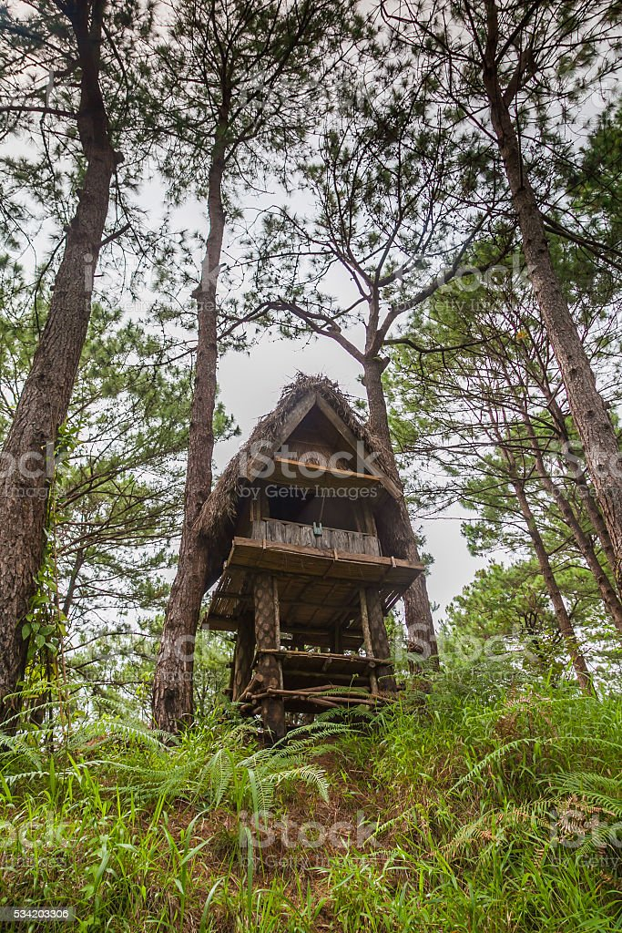 WOODEN FOREST HUT ECO LODGE BAGUIO NORTH LUZON PHILIPPINES stock photo