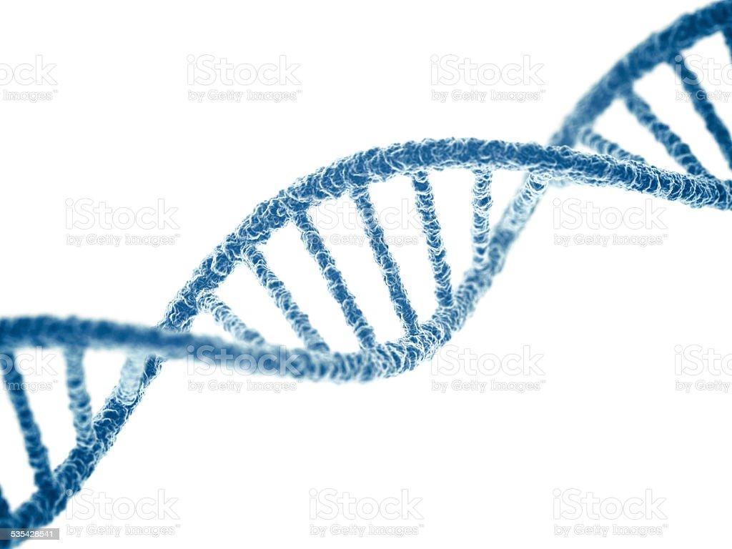 DNA stock photo