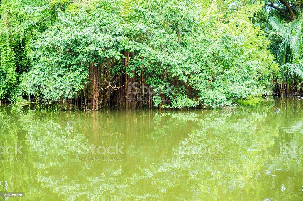 MOUNTAIN BLUE LAKE stock photo