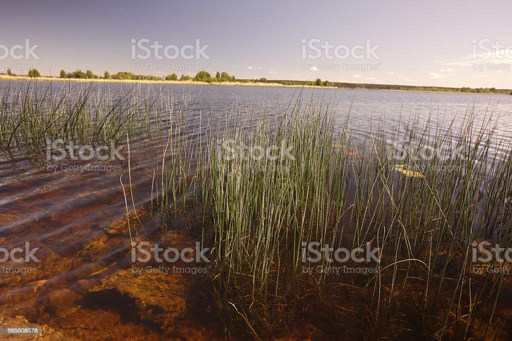 EUROPE LATVIA RIGA JURMALA stock photo