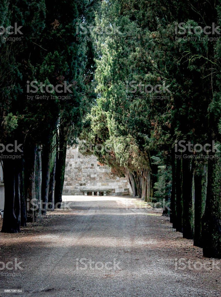 COUNTRY HOUSE ENTRANCE TUSCANY ITALY stock photo