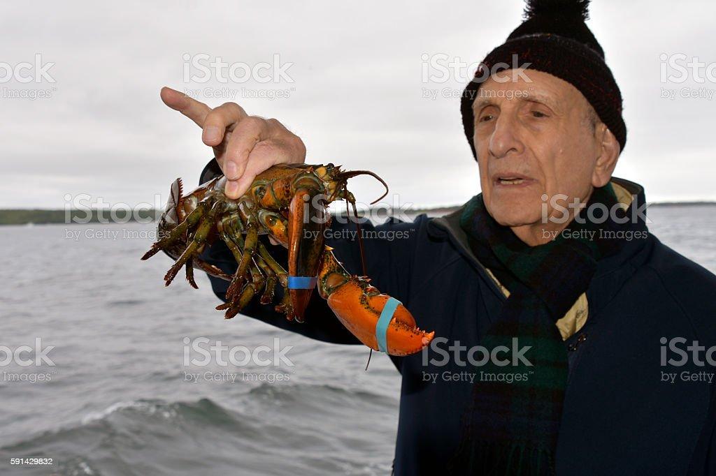 SENIOR MAN HOLDING LOBSTER stock photo
