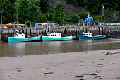 THREE LOBSTER BOATS IN ST. MARTINS