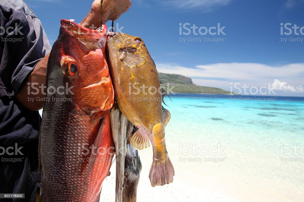 ASIA EAST TIMOR TIMOR LESTE JACO ISLAND stock photo