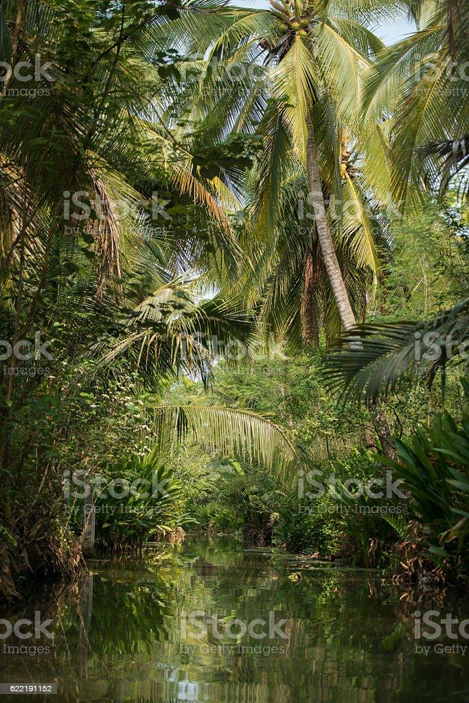 ASIA THAILAND SAMUT SONGKHRAM THA KHA LANDSCAPE stock photo
