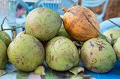 ASIA MYANMAR BAGAN COCOSNUT