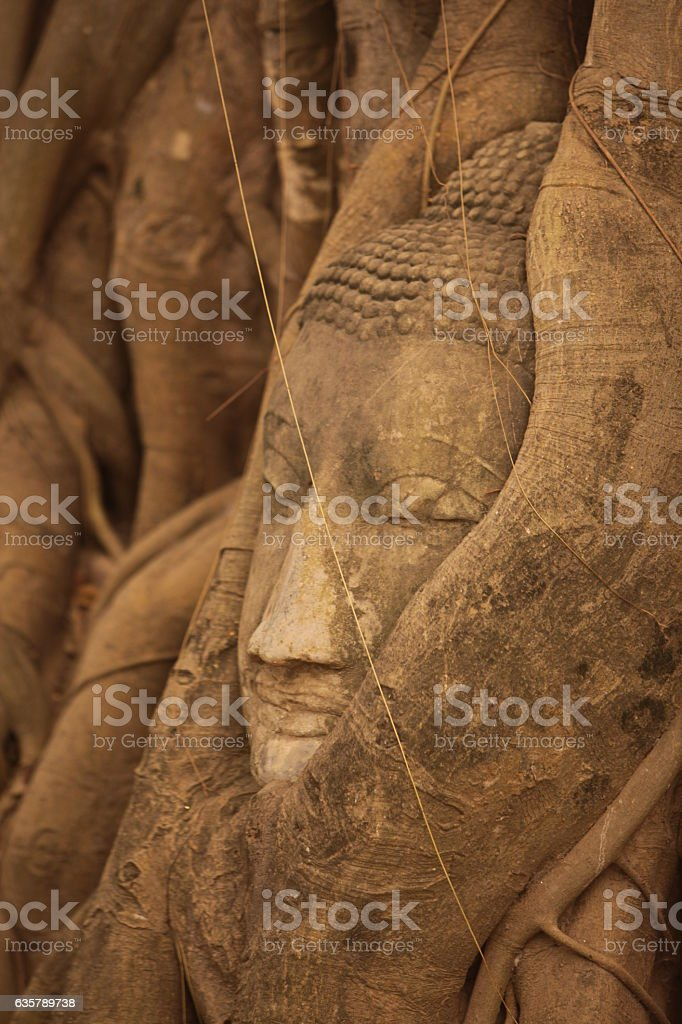 ASIA THAILAND AYUTHAYA WAT PHRA MAHATHAT STONE HEAD stock photo