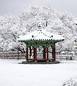 SNOW IN LAKE