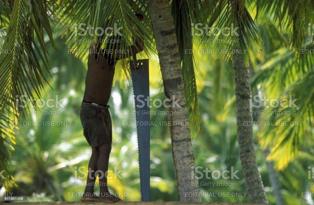 AMERICA CARIBIAN SEA DONINICAN REPUBLIC stock photo