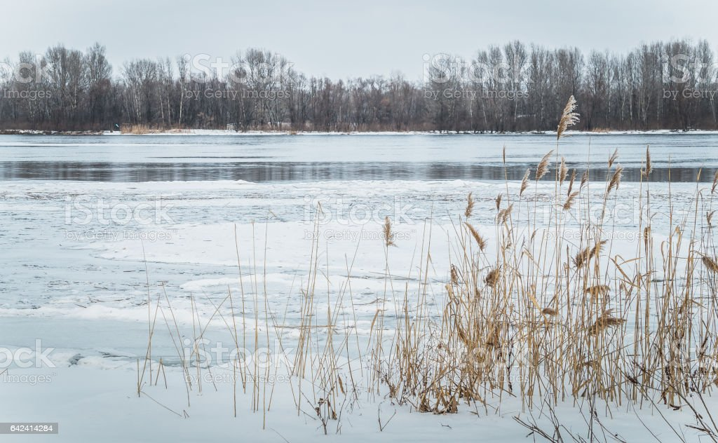 Талая вода. Пробуждение природы весной stock photo