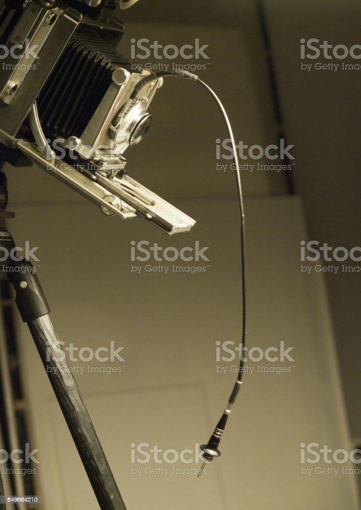 OLYMPUS DIGITAL CAMERA stock photo