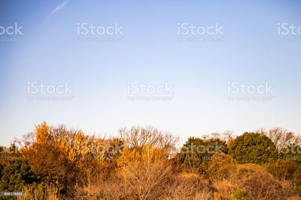 山と紅葉の風景 stock photo
