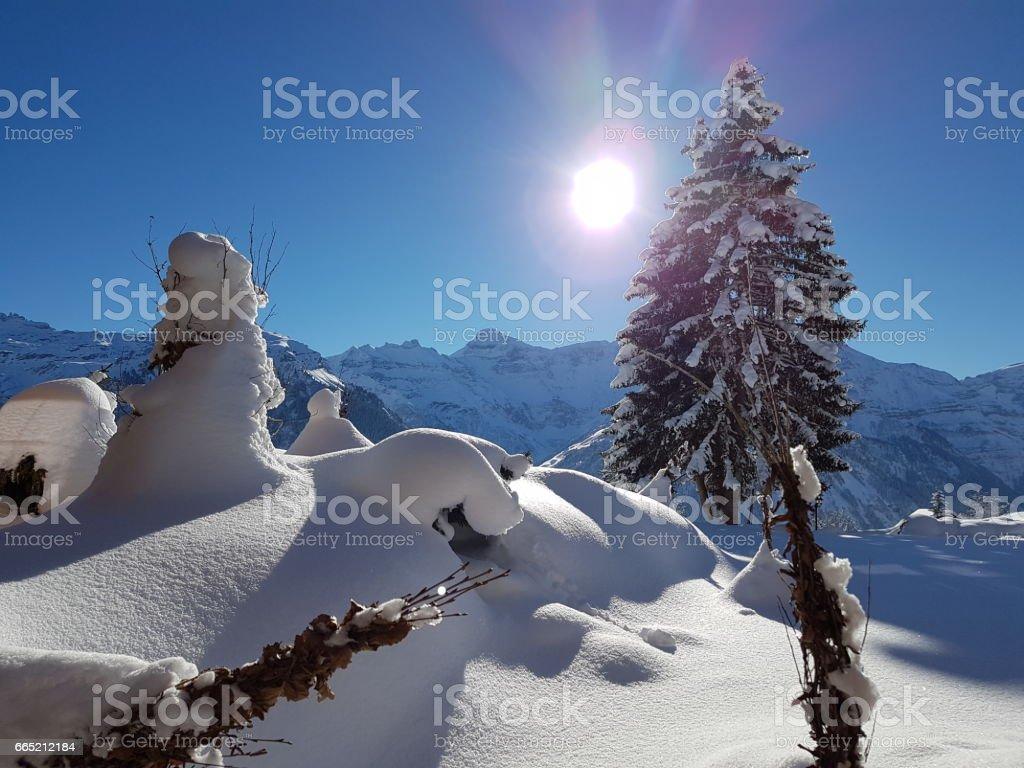 BRAUNWALD UNDER SNOW stock photo