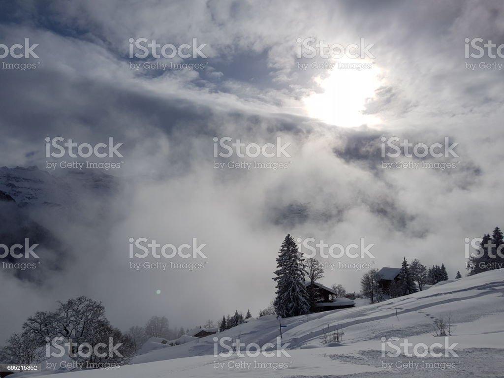 SUN AND FOG stock photo