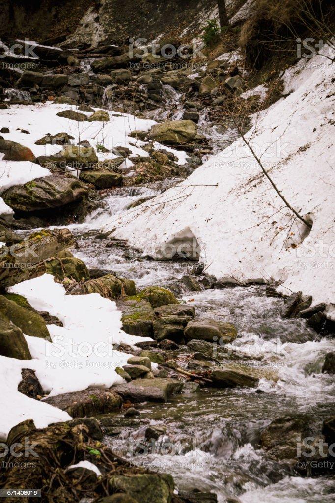 Живописный лесной ручей в Карпатских горах stock photo