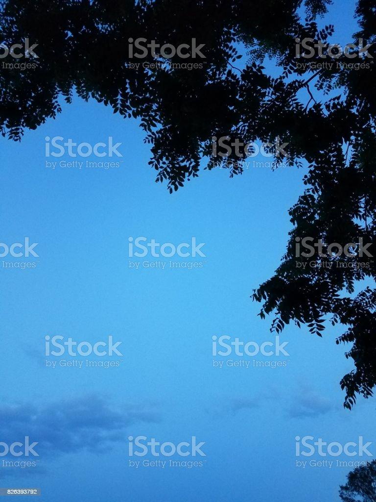 BLUE NIGJT stock photo