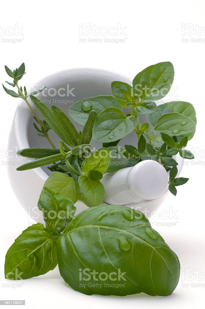2015_07_Moerser_Basilikum_Oregano_Rosmarin stock photo
