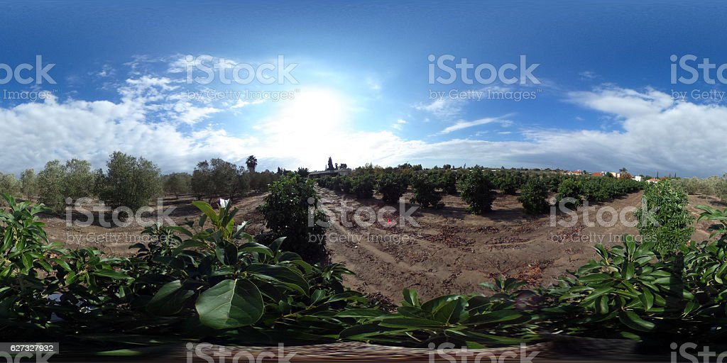 360-degree View orchard stock photo