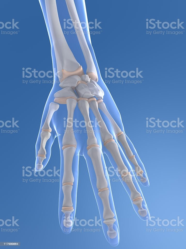 3d hand royalty-free stock photo