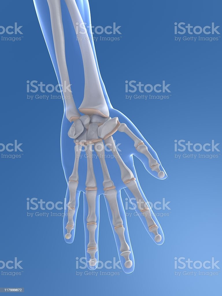 3d hand stock photo
