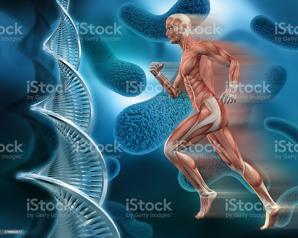 3d male medical figure on abstract dna virus background stock, Muscles