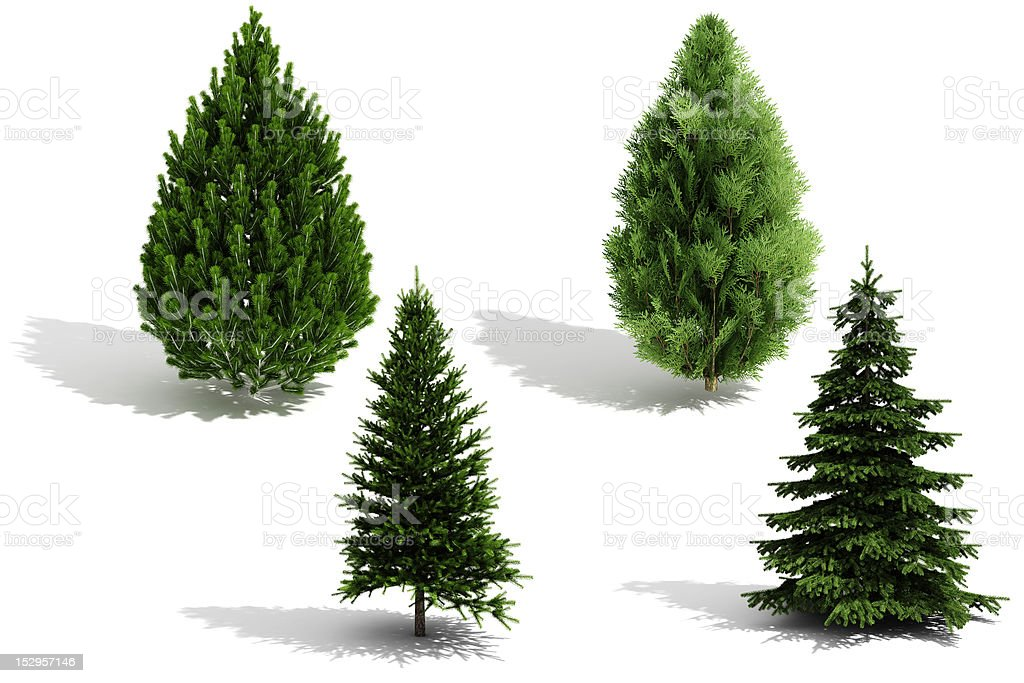 3d tree pack - render on white background stock photo