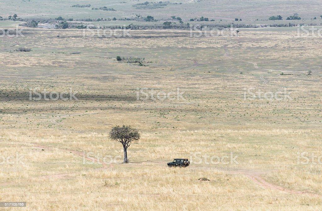 4x4 on safari game drive in the Maasai Mara. stock photo