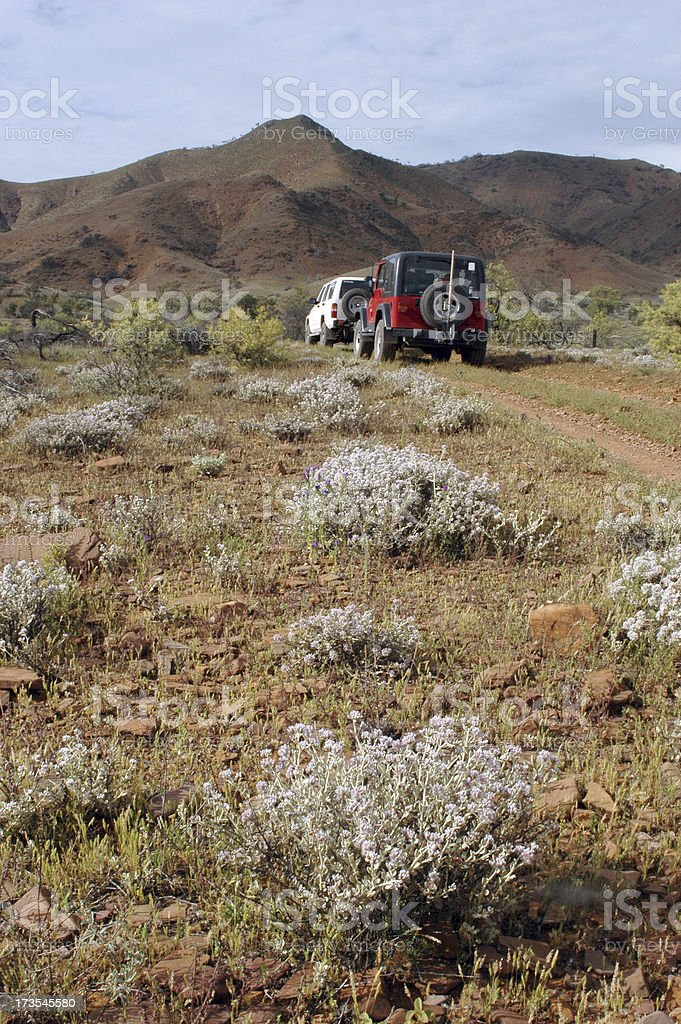 4x4 vehicles driving in the Flinders Ranges stock photo