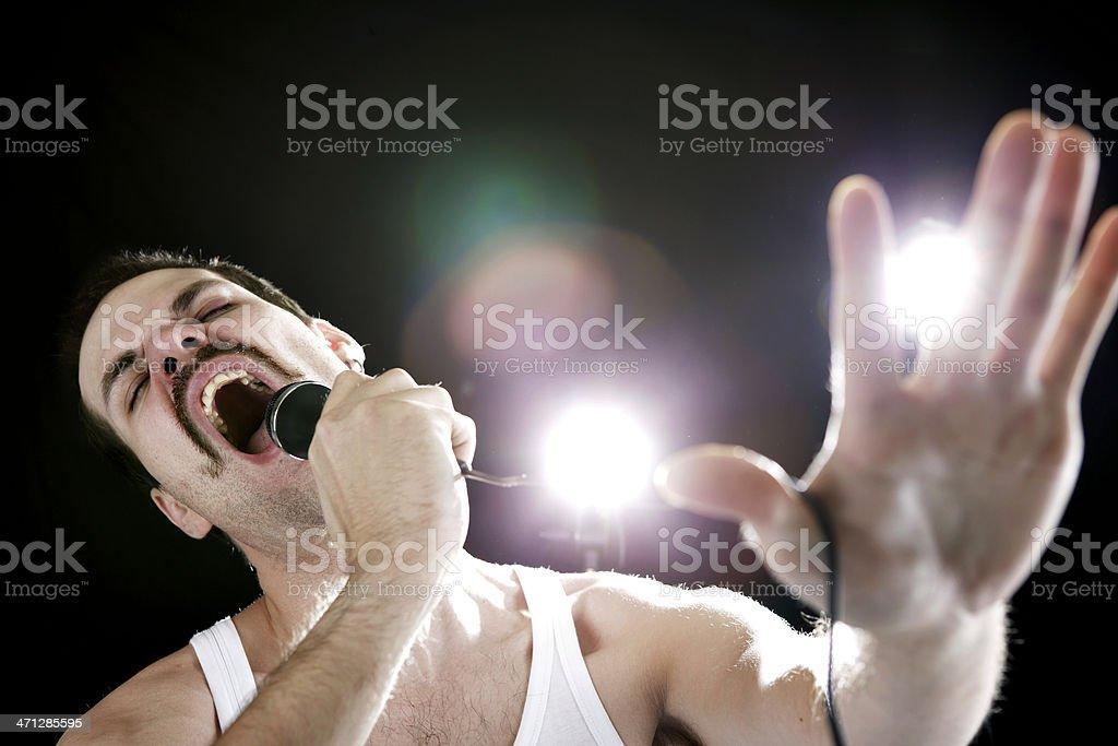 70s Rock Singer royalty-free stock photo