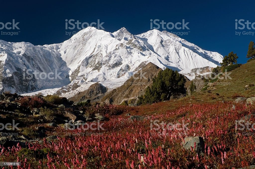 7788m, Karakoram, Pakistan. Rakaposhi royalty-free stock photo