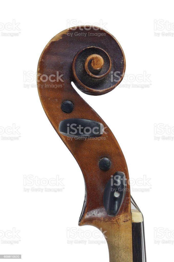 a violin image on the white background stock photo