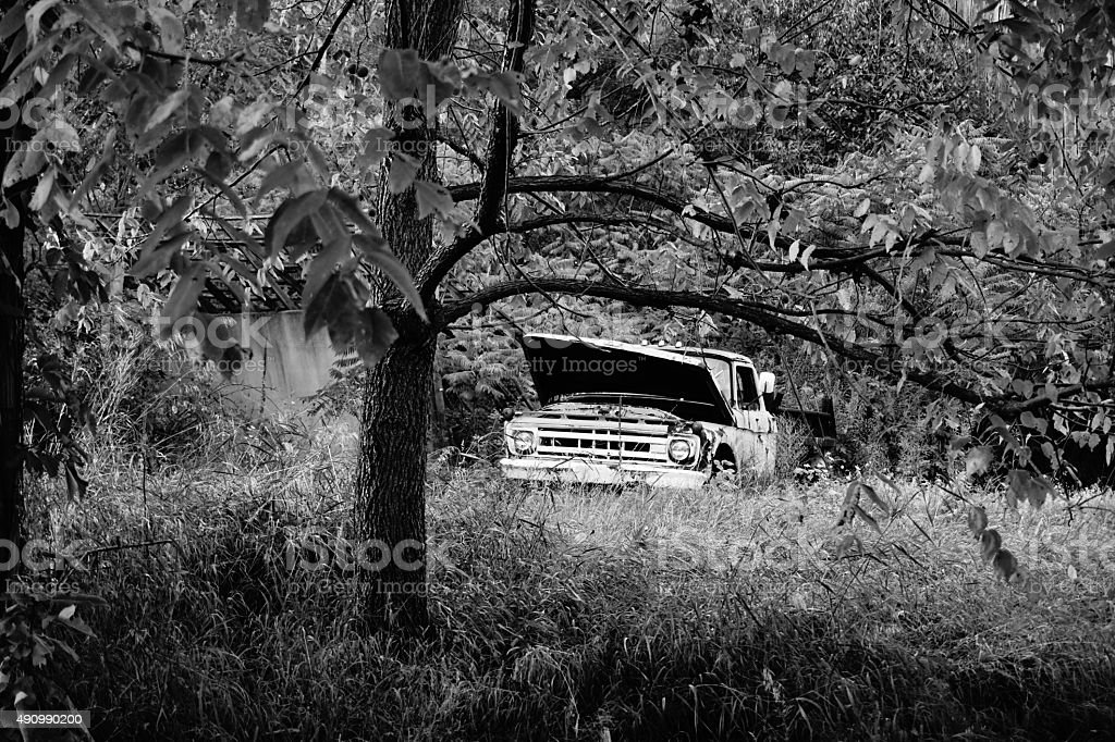 Abandonded Truck in the Woods stock photo