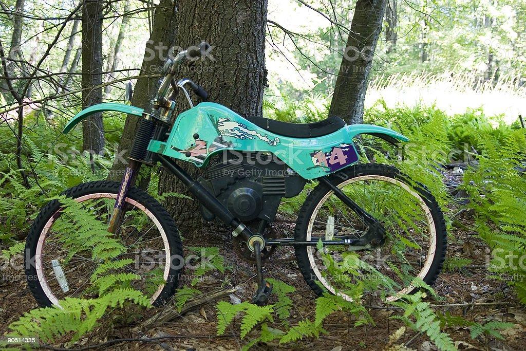 Abandoned bike royalty-free stock photo