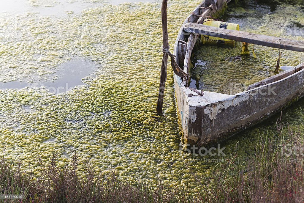 Abandoned boat in the pond royalty-free stock photo