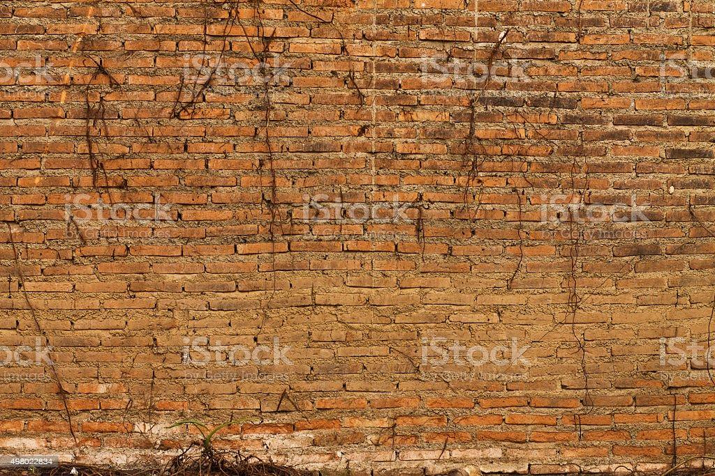 abandoned brick wall stock photo