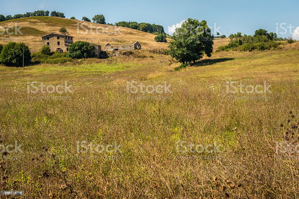 Abandoned farm house on a hill stock photo