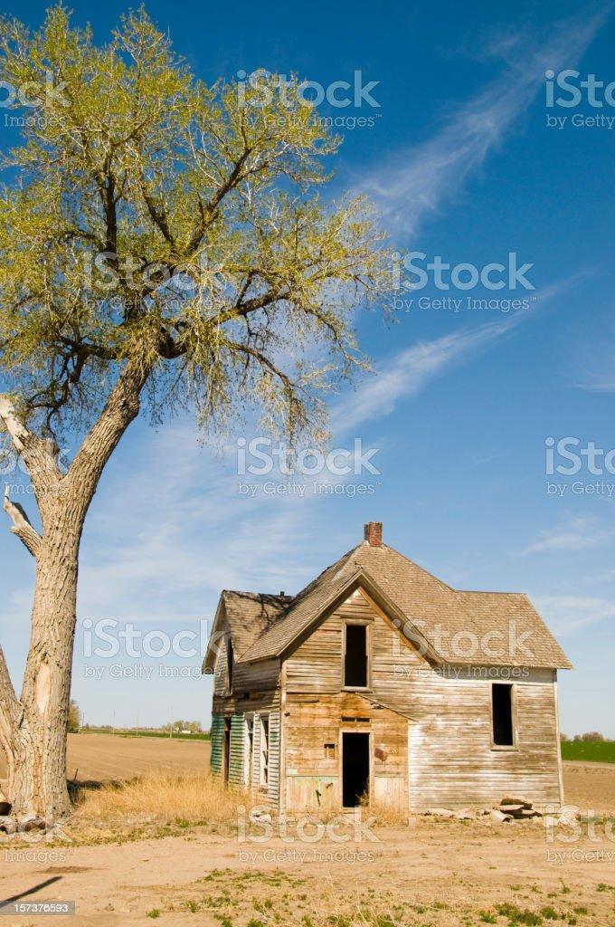 Abandoned Farmhouse with Shade Tree stock photo