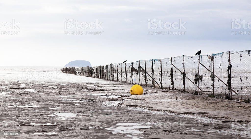 Abandoned Fence royalty-free stock photo