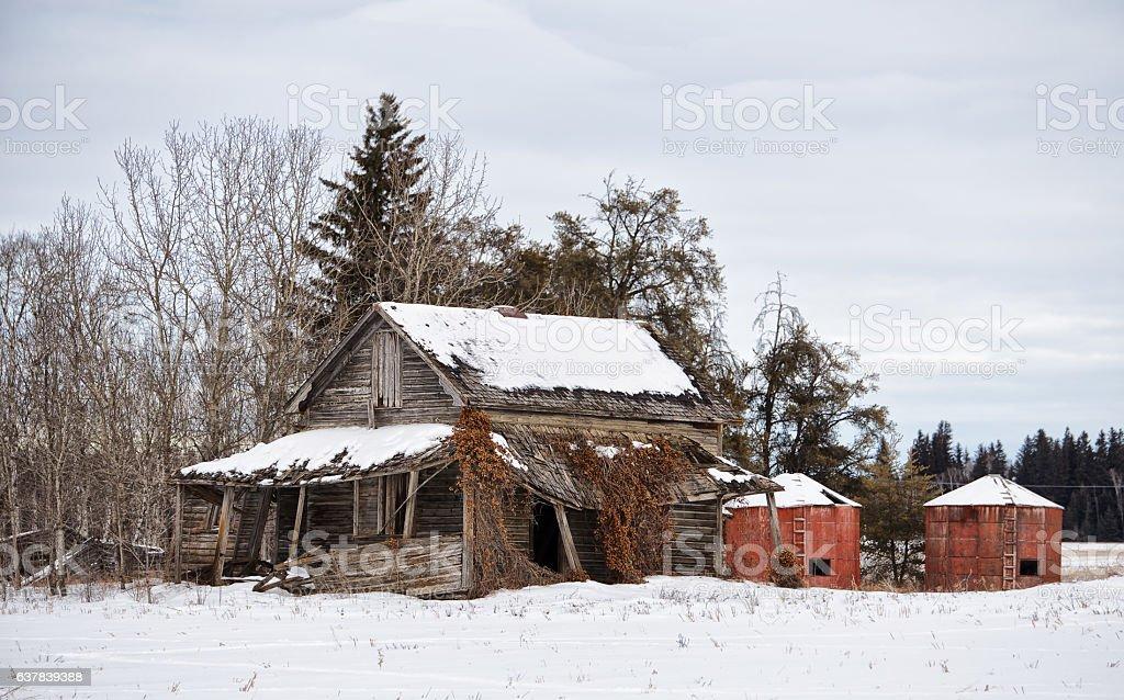 Abandoned homestead stock photo