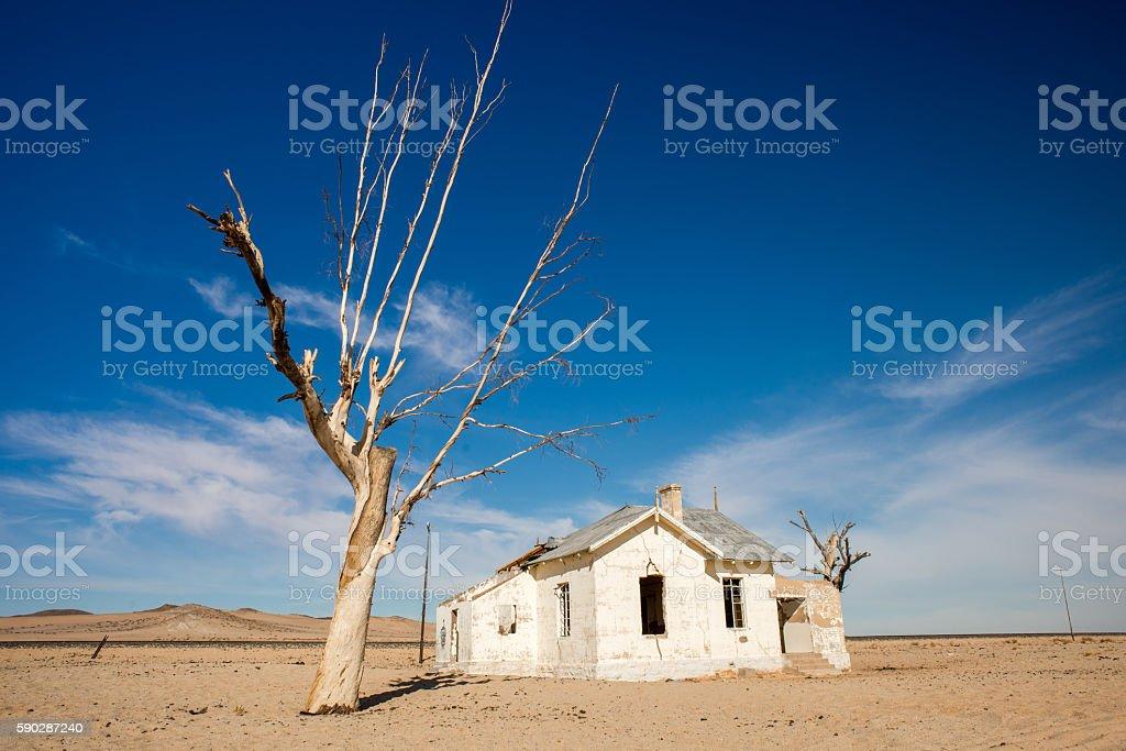 Abandoned House and Tree stock photo