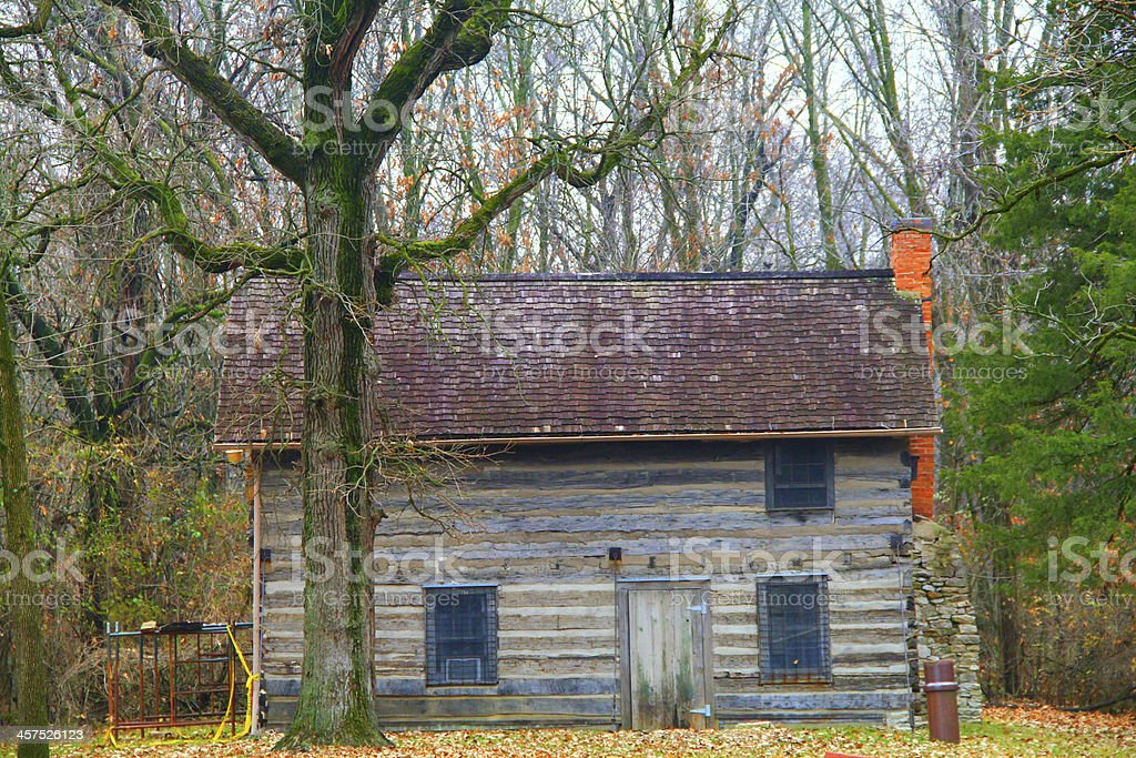 Abandoned House In A Forest stock photo