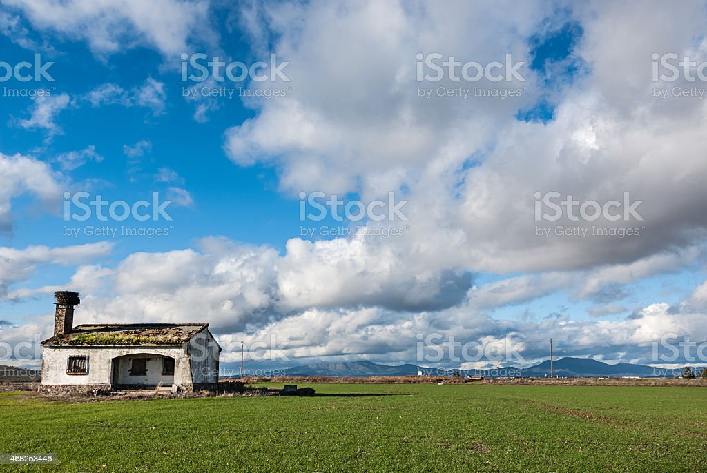 Abandoned house in green field of grass and cloudy sky stock photo