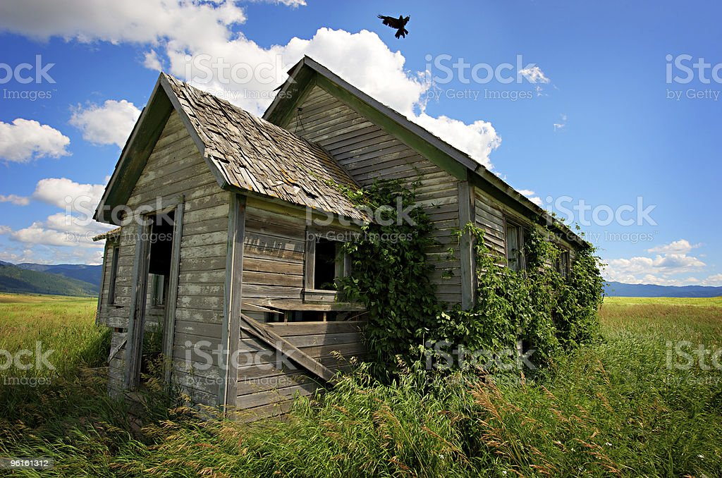 Abandoned House With Crow royalty-free stock photo