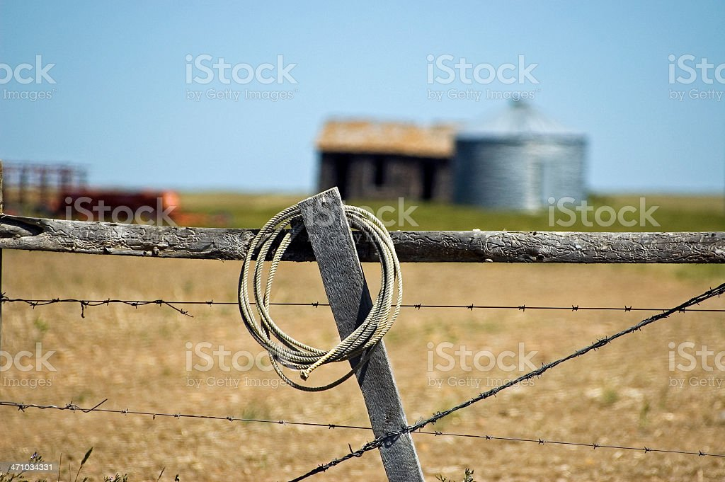Abandoned Lasso royalty-free stock photo