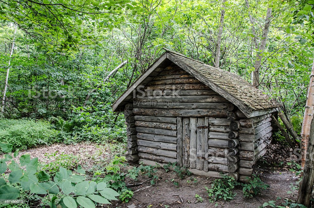 Abandoned log cabin in the woods stock photo