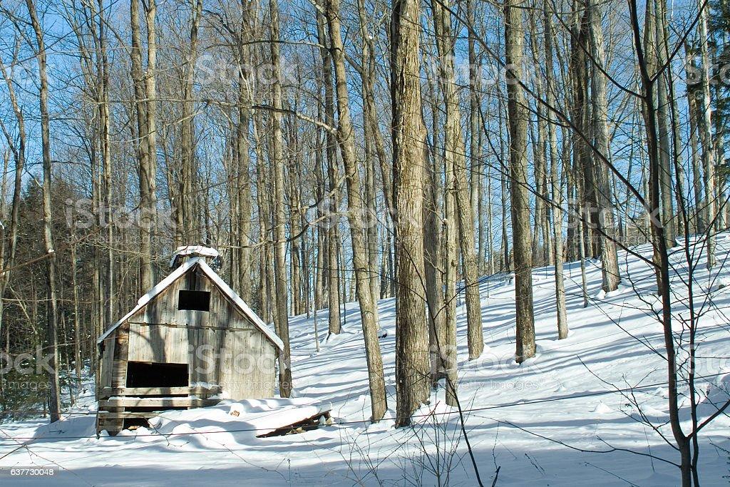 Abandoned New England Maple Sugarhouse stock photo