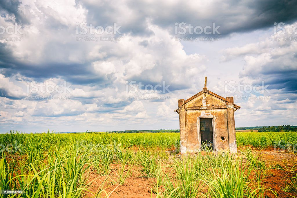 Abandoned old chapel inside a sugar cane plantation in Brazil stock photo